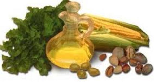 Herbert M. Evans y K. Scott Bishop descubren la vitamina E.