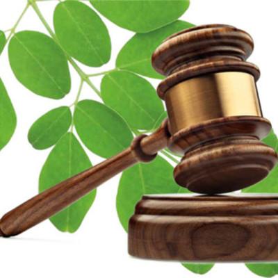Legislación Ambiental - Universidad del Caribe - Braulio Medina Santoyo timeline