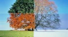 Seasons timeline