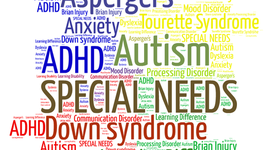 Special Education in the United States timeline