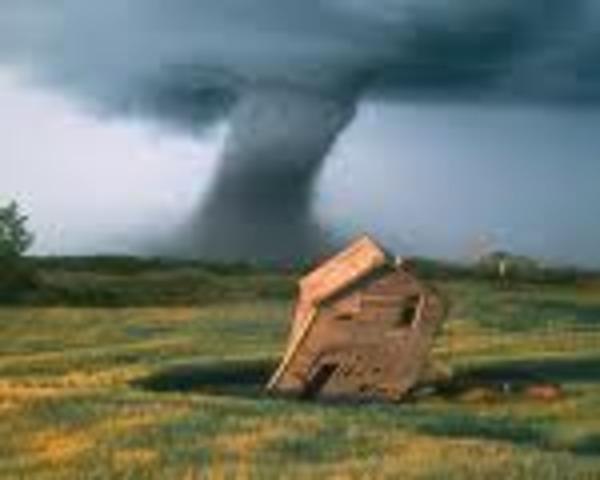 Fastest tornado wind speed.318