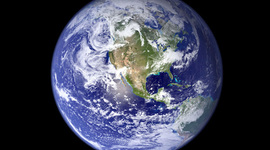 Élő környezet timeline