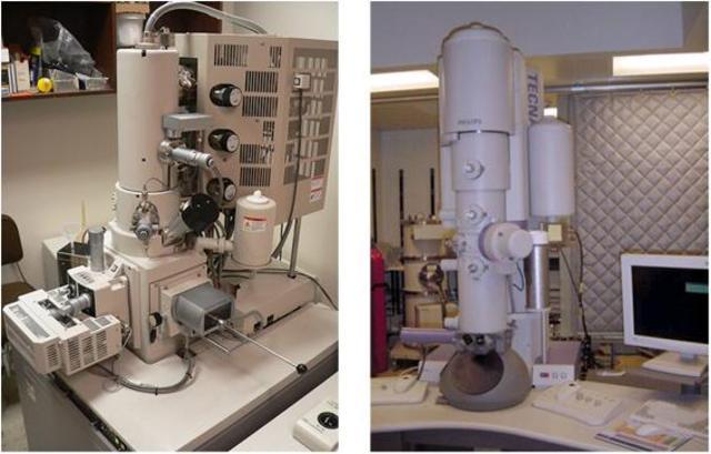 Primer microscòpi electronic