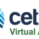 Logovirtual