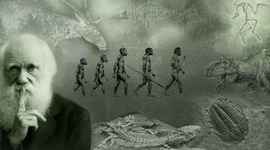 Charles Robert Darwin x Andrea timeline