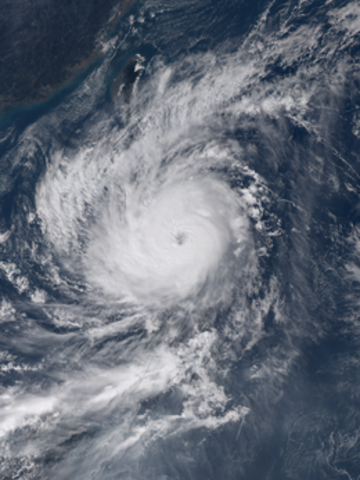 Typhoon Lando (Koppu)