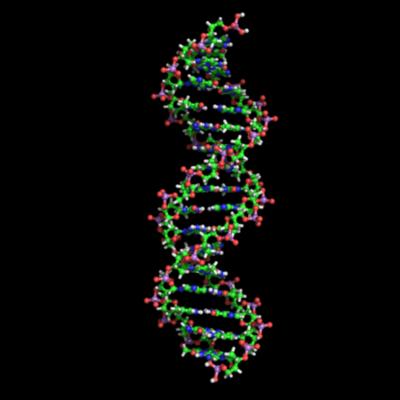 Scientists of DNA timeline