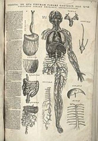 Historia de La Anatomia timeline | Timetoast timelines