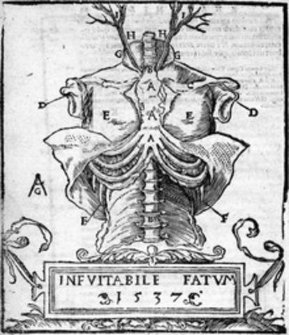 Historia de La Anatomia timeline   Timetoast timelines