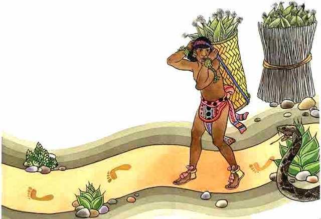 Agricultura zapoteca