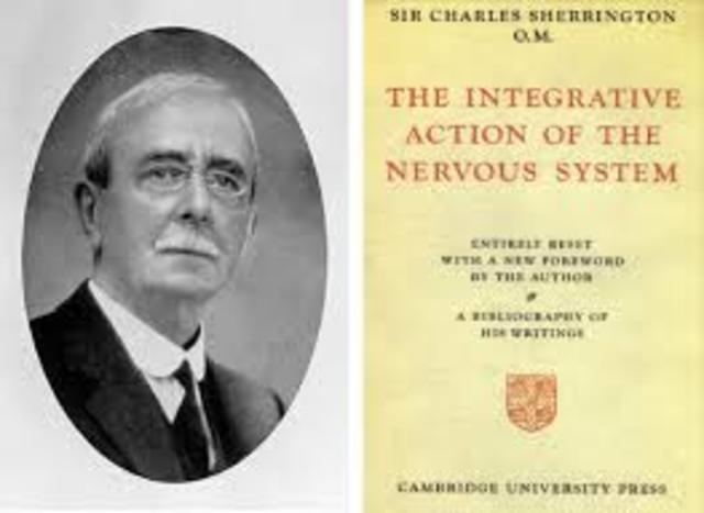 Sir Charles Scott Sherrington SIGLO XIX