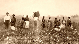 Slavery 1619-1865 timeline