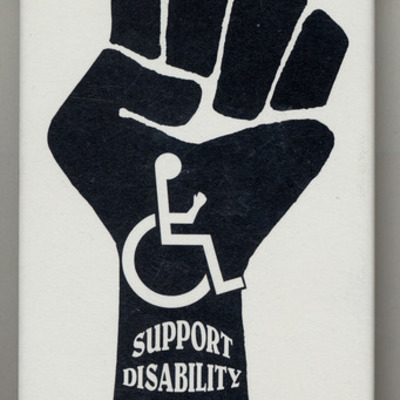 Principles, Movements and Legislation in Disability Rights timeline