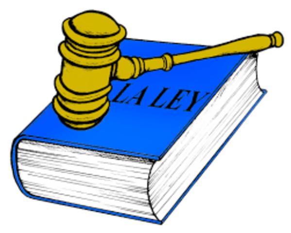 Se decreto la ley 99/93