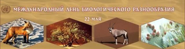 """Международный день биологического разнообразия (Команда """"Симбиоз"""" МБОУ СШ №15 г. Арзамас)"""