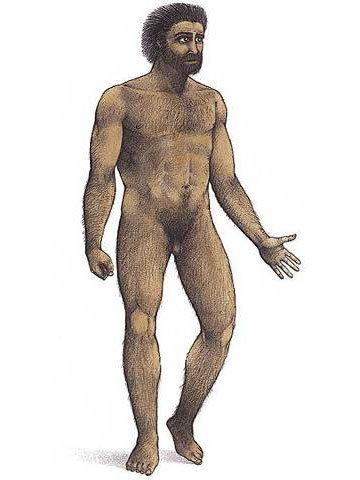 Homo sapiens sapiens (hace 200 000 años)