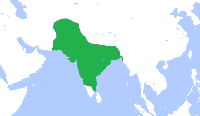 England and india 1500 1800 timeline timetoast timelines mughal empire formed india gumiabroncs Choice Image
