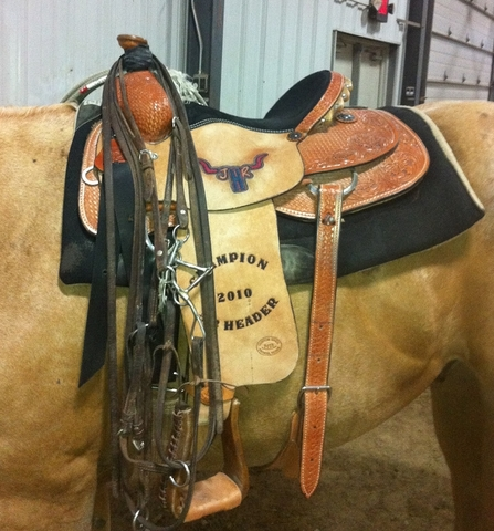I won my first Saddle