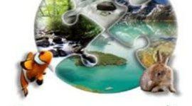 Экологический календарь на 2017 год timeline