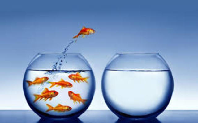 Studi su creatività e pensiero divergente