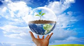 Значимые даты из истории охраны окружающей среды timeline