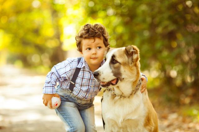 Día Seis — Animales y la humanidad
