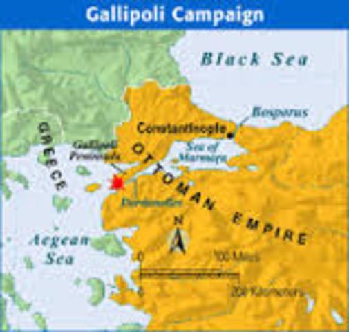 The Gallipoli campaign, World War 1914-1916 timeline   Timetoast ...