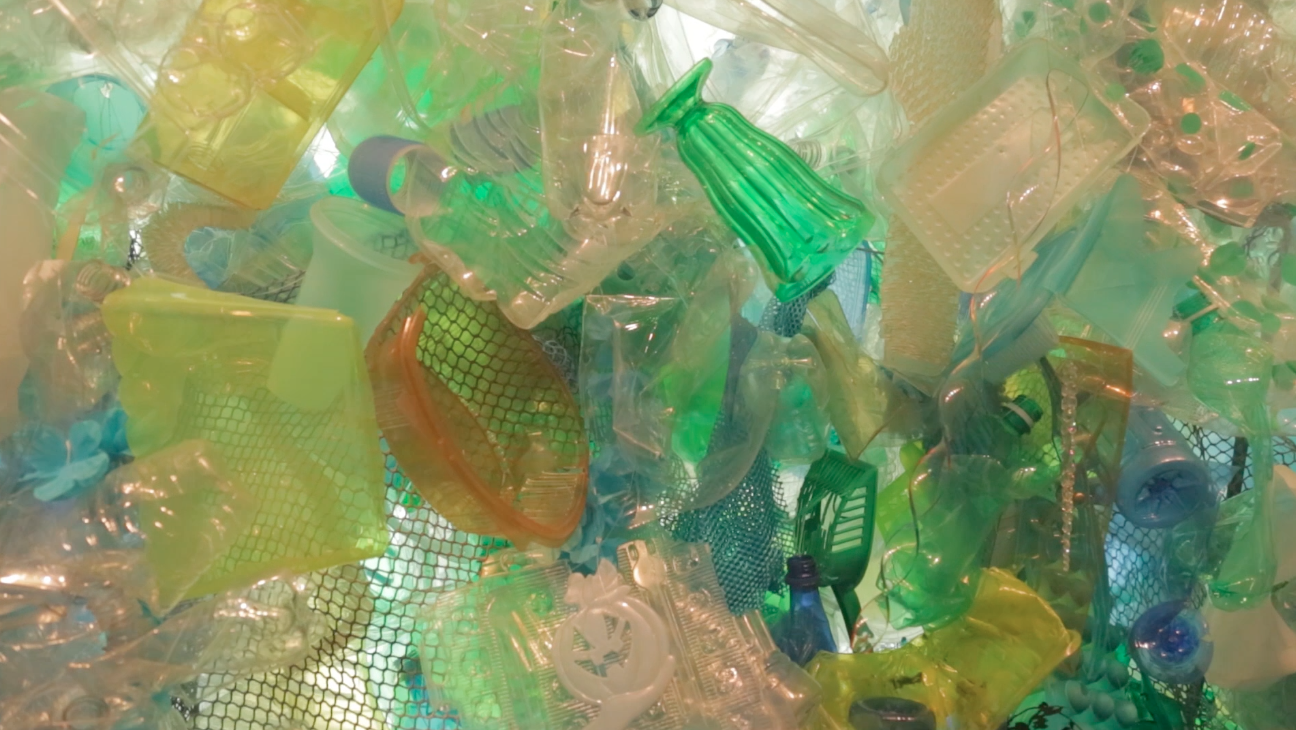 Science Today: Plastic Pollution   California Academy of Science thumbnail