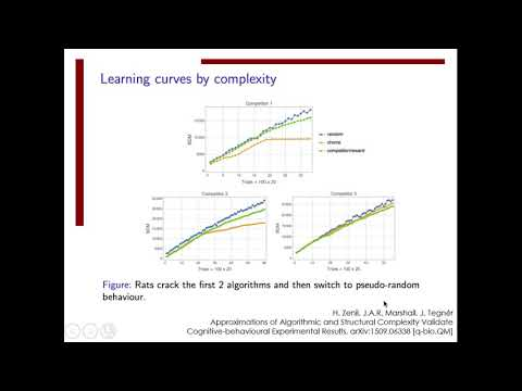 7.7 Integer and Behavioural Sequences, and Algorithmic Cognition thumbnail