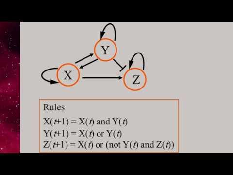 5.7 Kauffman Model (Boolean Networks) thumbnail