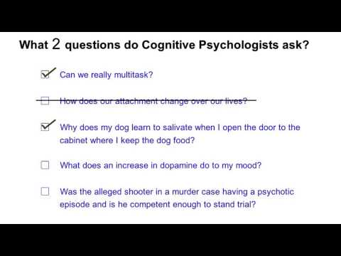 Questions for cognitive psychologists - Intro to Psychology thumbnail