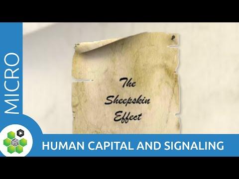 Human Capital and Signaling thumbnail