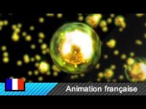 Fission nucléaire (Animation) thumbnail