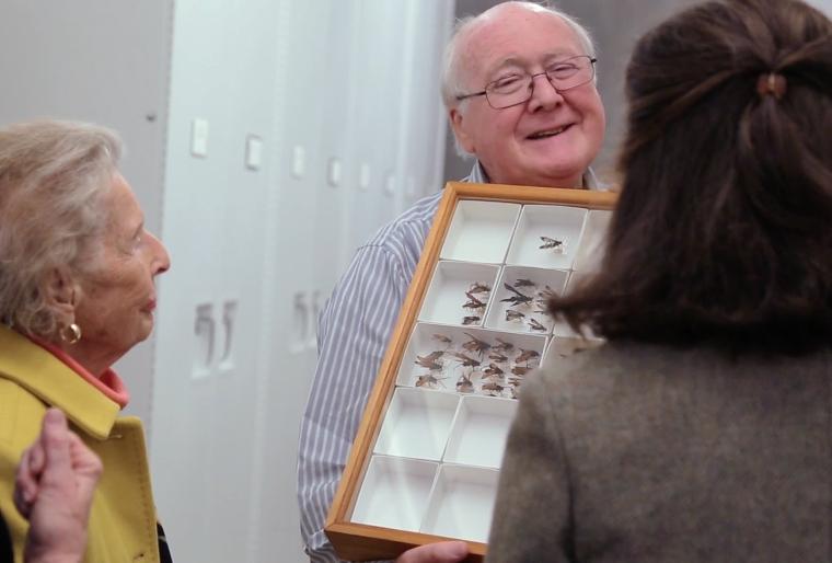 Science Today: An Entomologist's Entomologist   California Academy of Sciences thumbnail