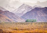 Denali Tour bus