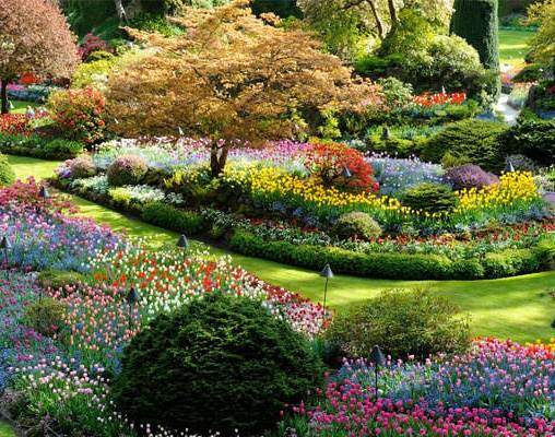 Portland seattle vancouver with victoria by train - Portland japanese garden free day ...