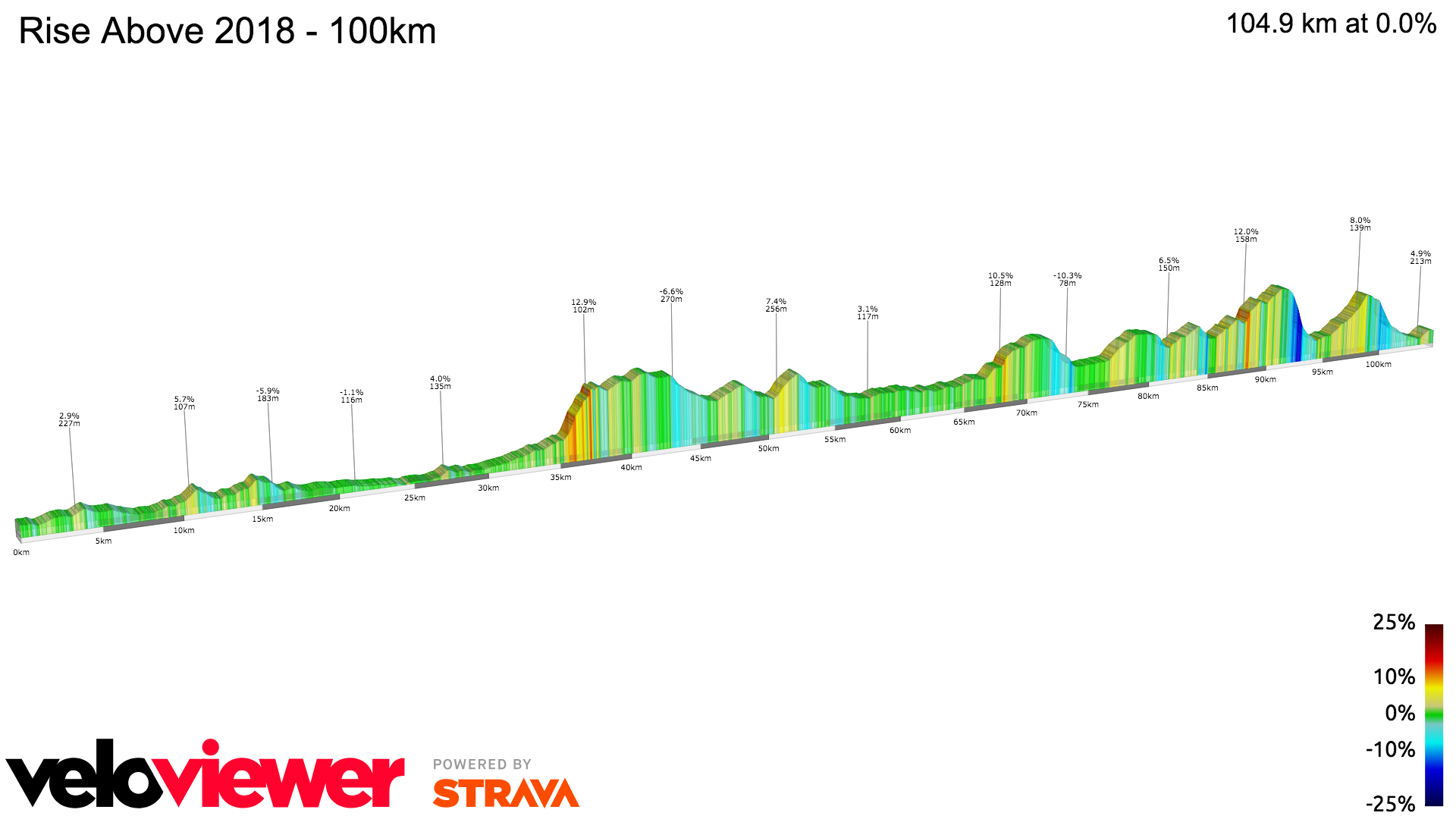 2D Elevation profile image for Rise Above 2018 - 100km