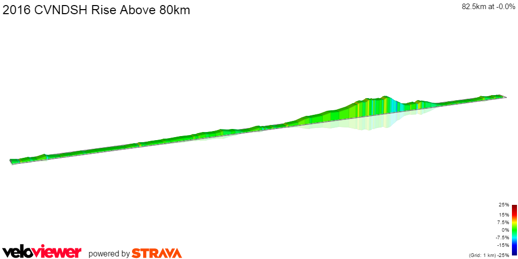 2D Elevation profile image for 2016 CVNDSH Rise Above 80km