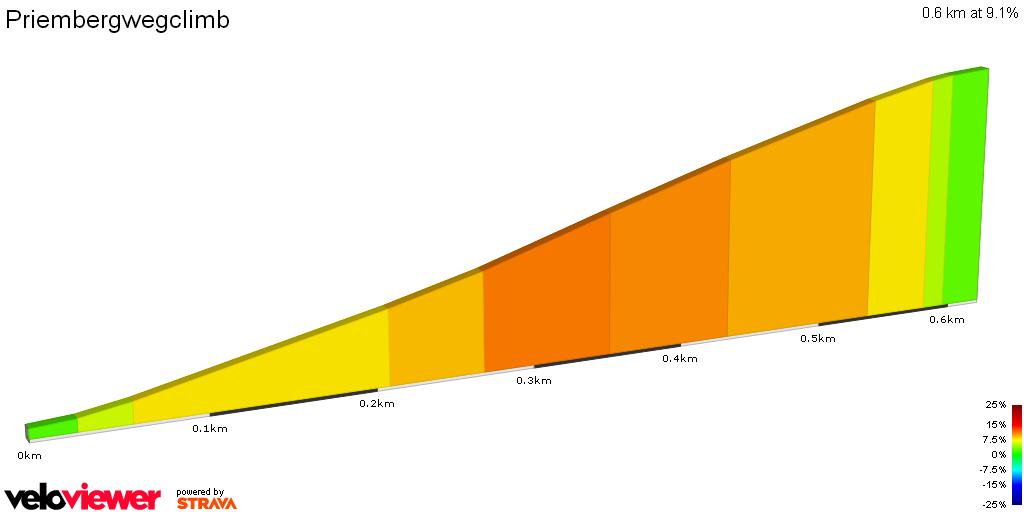 2D Elevation profile image for Priembergwegclimb