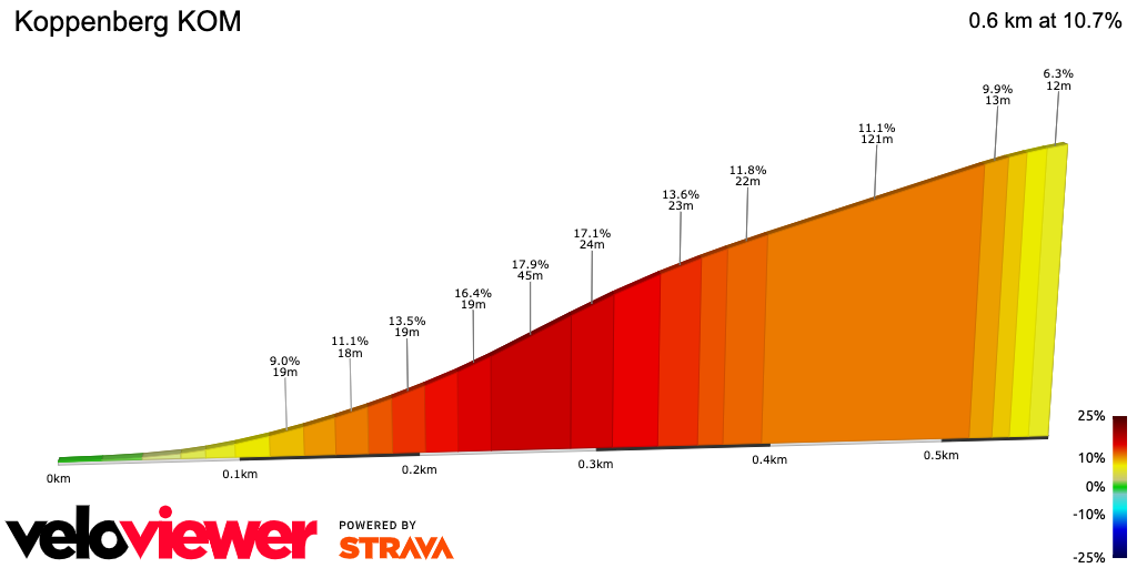 2D Elevation profile image for Koppenberg KOM