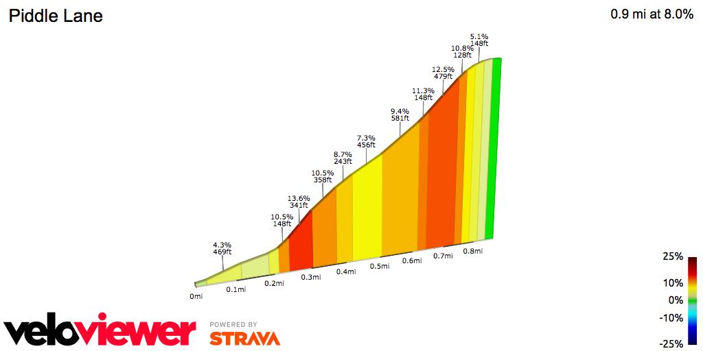 2D Elevation profile image for Alpe d'Piddle Lane