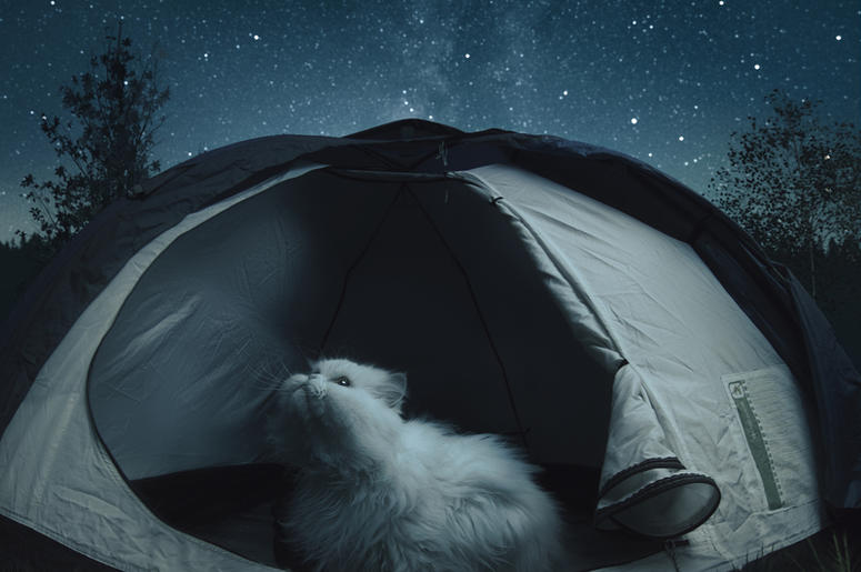 a9a2ea4fbf Look at These Cats in Cat-Sized Tents!