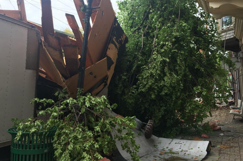 Storm Damage in Newburgh