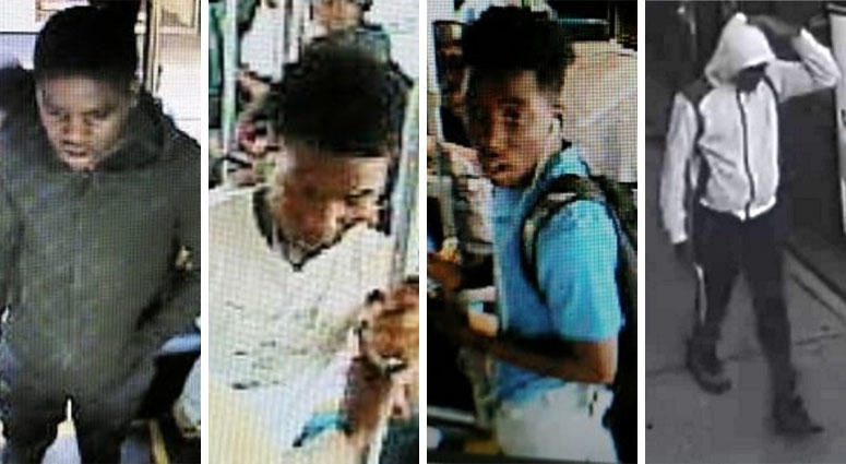 Bronx Bus Driver Attack Suspects