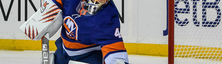 What are the Bruins getting in new backup goalie Jaroslav Halak?