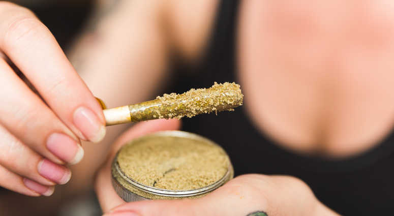 Woman holding a cannabis or marijuana joint in her hand. Joint is dipped in oil or wax and sprinkled with kief