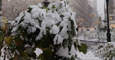 Snow slams NYC, Twittersphere lights up