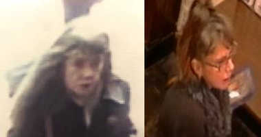 Cops are looking for a woman who stole a woman's purse during a church service in the Bronx.