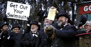 Image result for pictures of punxsutawney phil 2/2/19