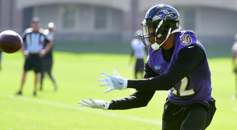 Ravens: Injured Players in 2018 That Could Provide Impact Next Season
